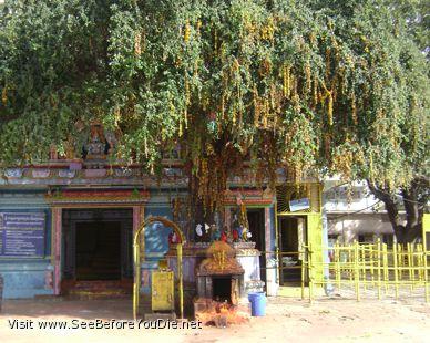 mallikarujan temple